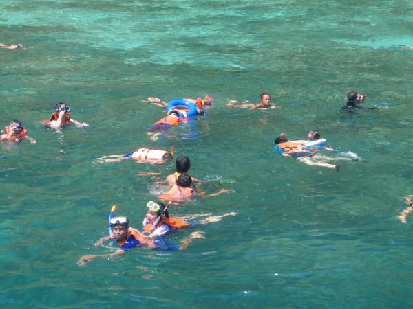 snorkeling-19