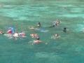 snorkeling-21